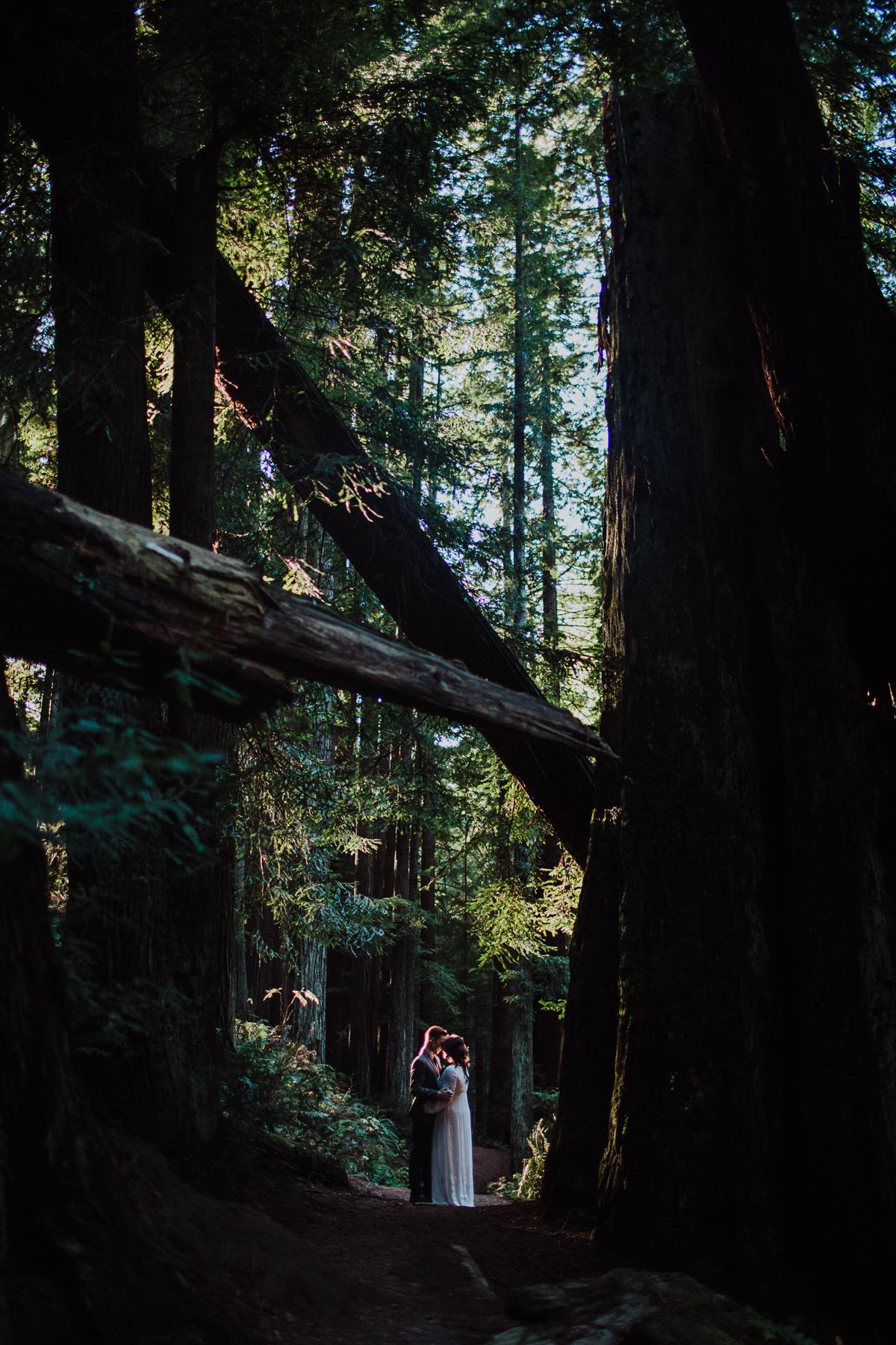 BG redwoods wedding photographer-27