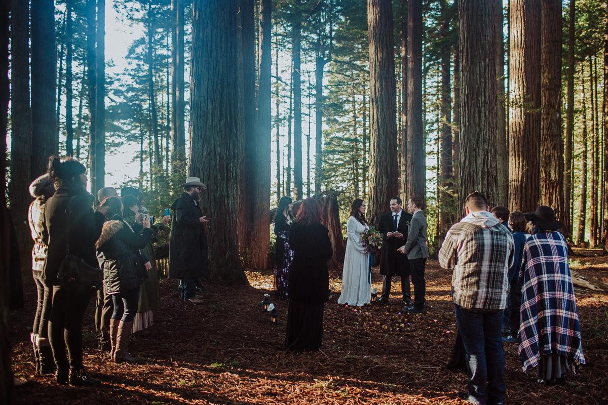 BG redwoods wedding photographer-38