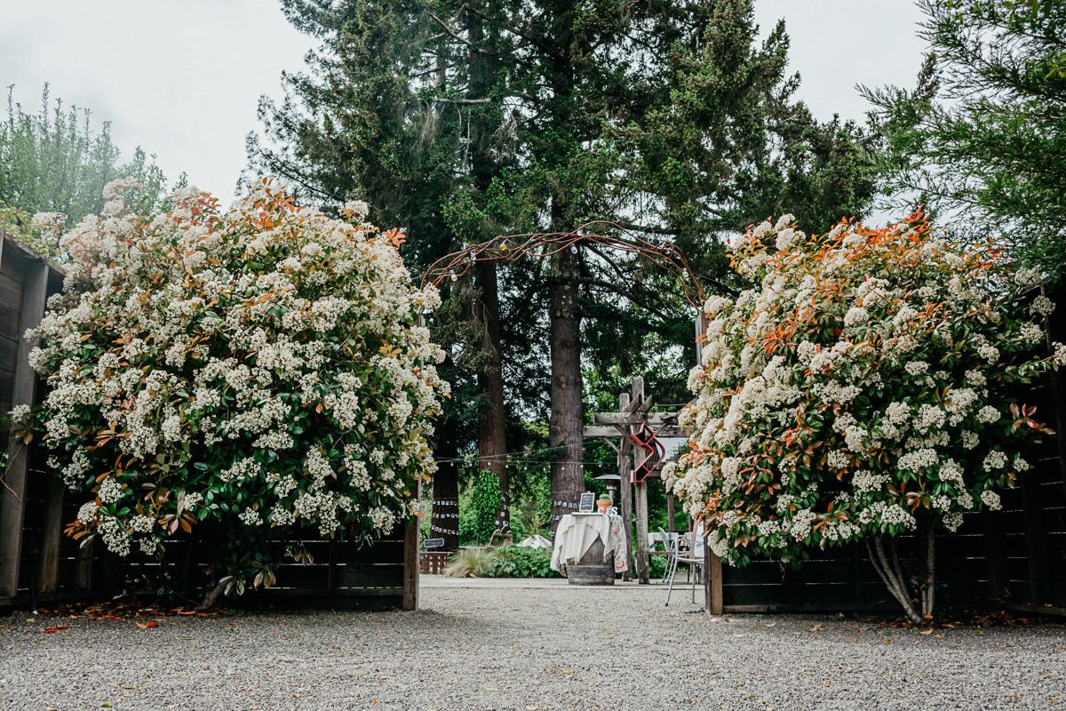 SC Mendocino Wedding Photographer-30
